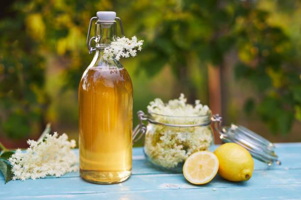 Bottle of elderflower syrup and elderberry flowers stock photo