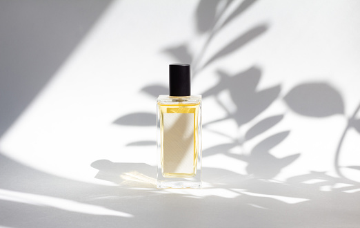 Bottle of essence perfume on white background with sunlight and shadows of leaves. Minimal style perfumery template