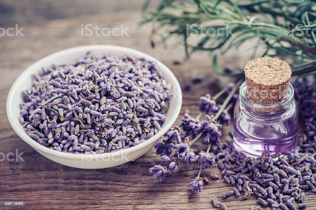 Bottle of essential oil and lavender flowers in bowl stock photo