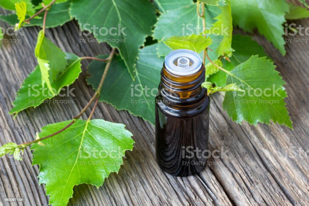 A bottle of essential oil with birch branches royalty-free stock photo