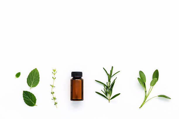 bottle of essential oil with  fresh herbal . - aromatherapy stock photos and pictures