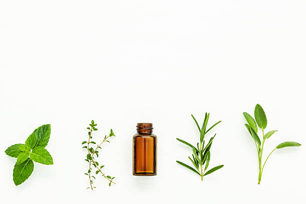 Bottle of essential oil with  fresh herbal sage, rosemary, lemon – Foto