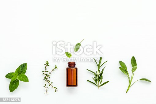 istock Bottle of essential oil with  fresh herbal sage, rosemary, 637413278