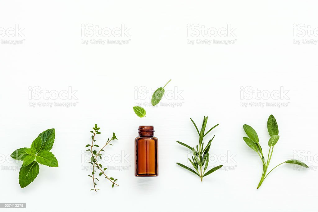 Bottle of essential oil with  fresh herbal sage, rosemary, – Foto