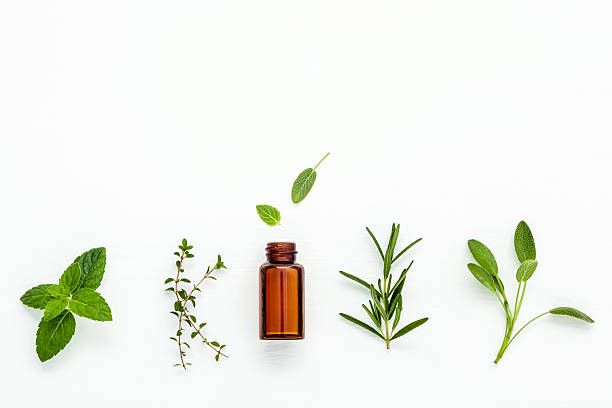 bottle of essential oil with  fresh herbal sage, rosemary, - aromaterapi stok fotoğraflar ve resimler