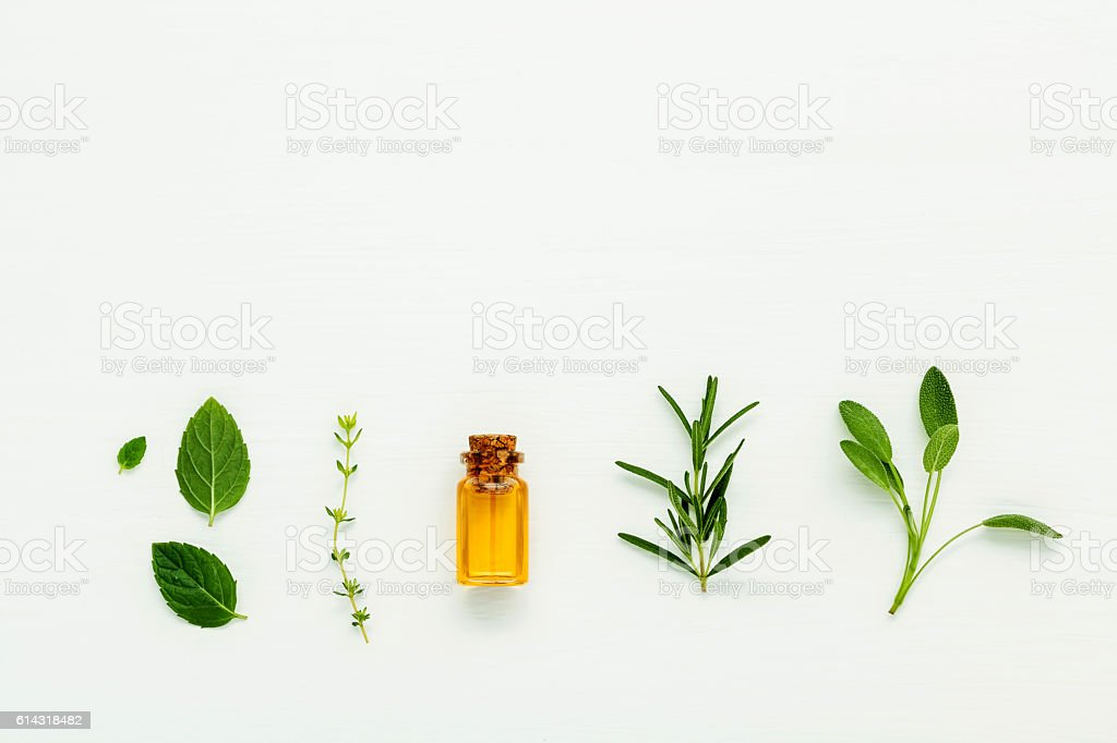 Bottle of essential oil with  fresh herbal sage, rosemary, thyme - foto de stock