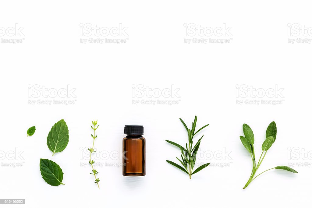 Bottle of essential oil with  fresh herbal sage, rosemary, thyme stock photo