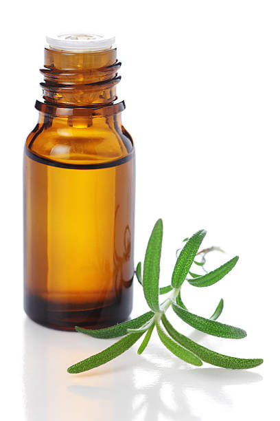Bottle of essential oil with fresh rosemary sprig stock photo