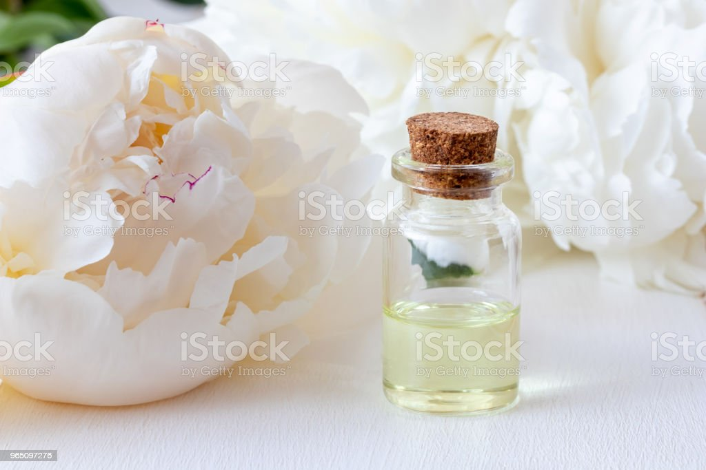 A bottle of essential oil with fresh white peony flowers royalty-free stock photo