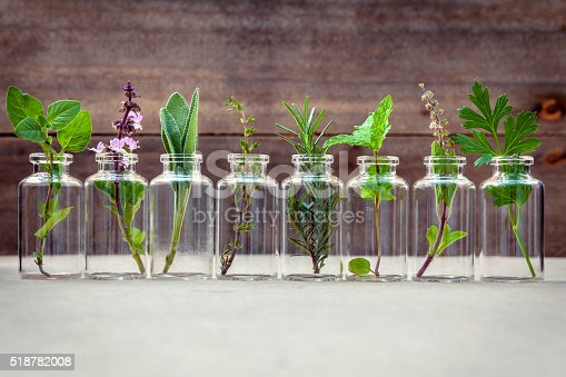 istock Bottle of essential oil with herbs . 518782008