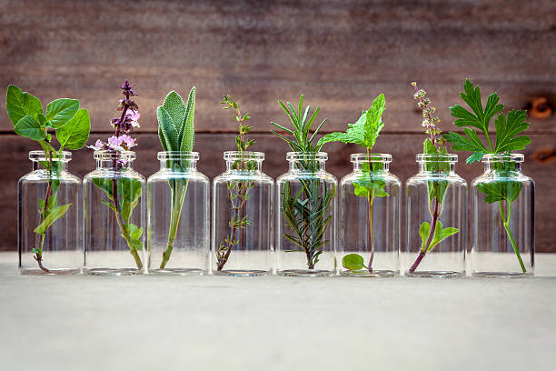bottle of essential oil with herbs . - holistic medicine stock photos and pictures