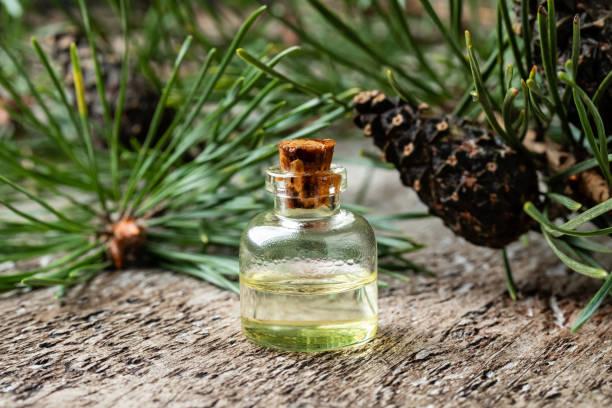 en flaska eterisk olja med tall grenar - fur bildbanksfoton och bilder