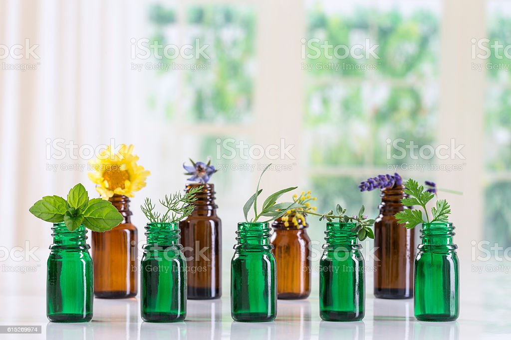 bottle of essential oil with selective medicinal herbs and plants stock photo