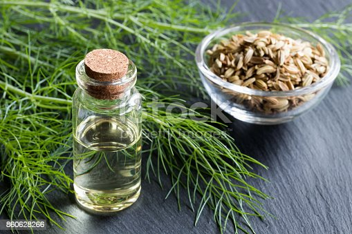 A bottle of fennel essential oil with fresh fennel tops and fennel seeds in the background