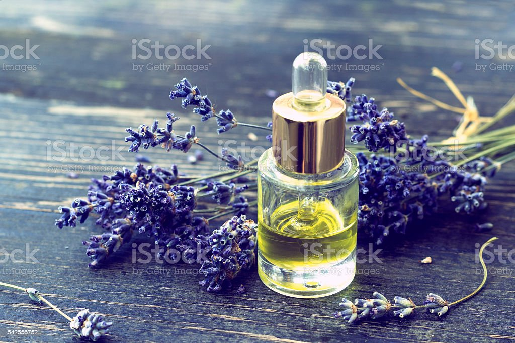 Bottle of lavender oil and lavender flowers stock photo