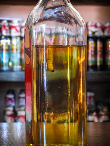 botella de mezcal - mezcal fotografías e imágenes de stock