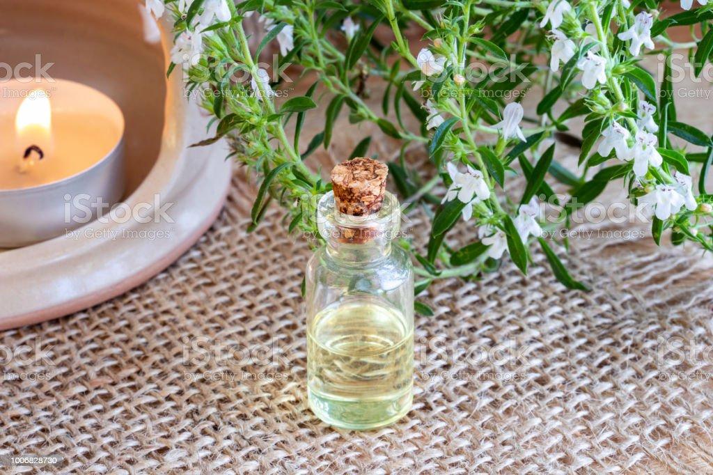 Eine Flasche Berg Bohnenkraut ätherisches Öl mit frischen blühende Satureja Montana Pflanze – Foto