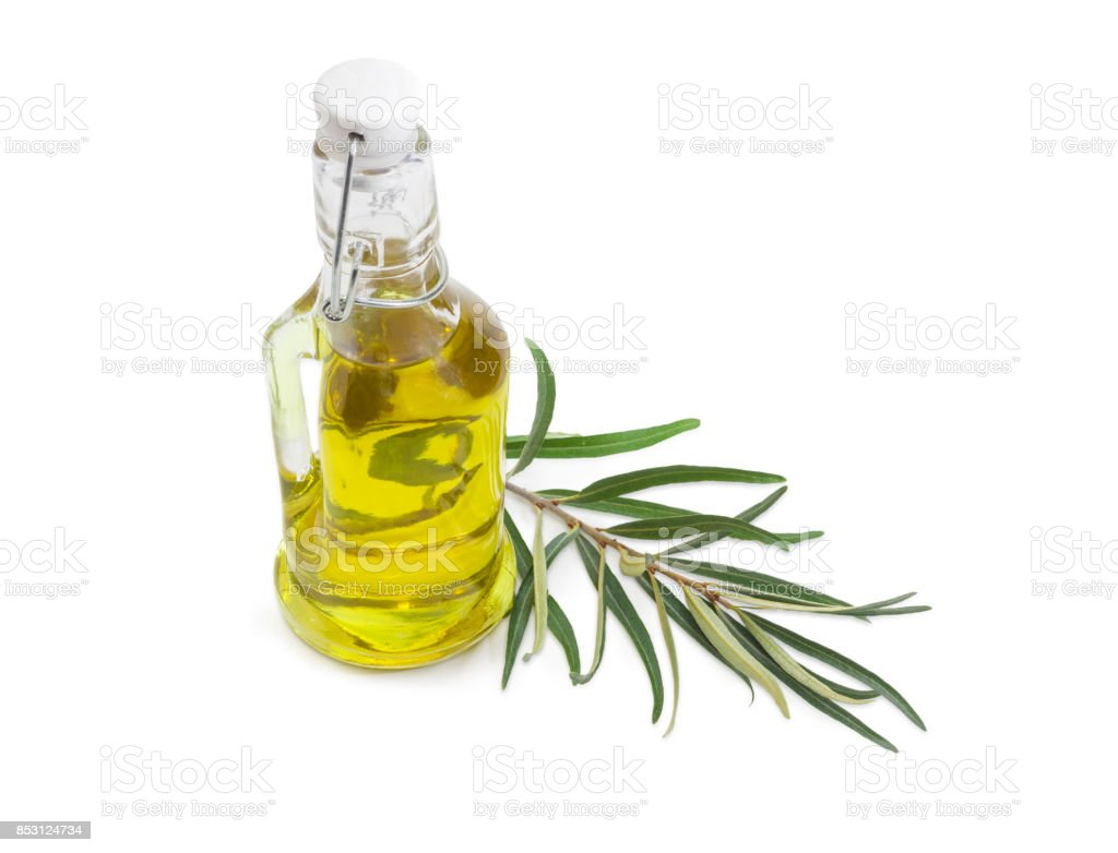 Bottle of olive oil and olive branch stock photo