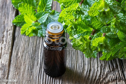 A bottle of peppermint essential oil with fresh peppermint twigs