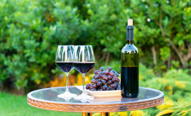 Bottle of red wine and plate of grapes Bottle of red wine, plate of grapes and two glasses on the table in the yard merlot grape stock pictures, royalty-free photos & images
