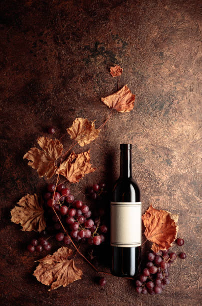 Bottle of red wine with ripe grapes and dried up vine leaves. Old copper background. stock photo