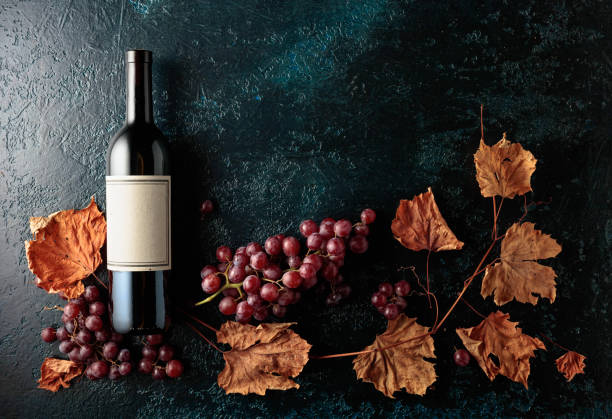 Bottle of red wine with ripe grapes and dried up vine leaves. stock photo