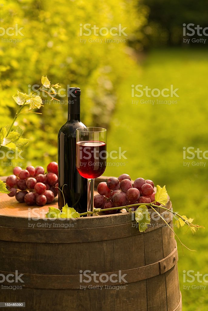 Bottle of red wine with wineglass and grapes in vineyard royalty-free stock photo