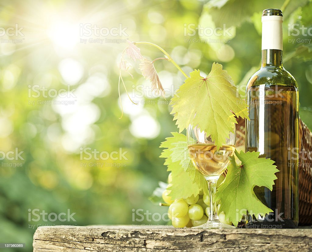 Bottle of white wine next to grapes and a glass outdoors stock photo