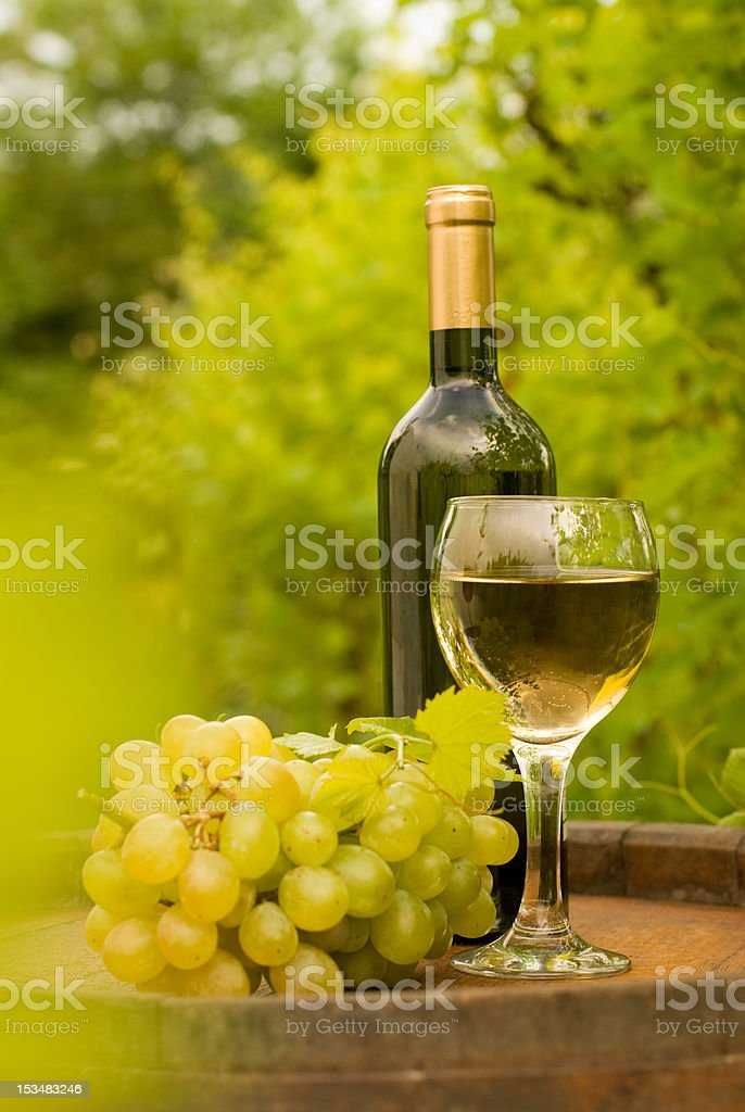 Bottle of white wine with wineglass and grapes in vineyard royalty-free stock photo