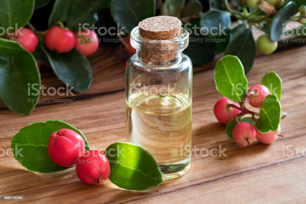 A bottle of wintergreen essential oil stock photo