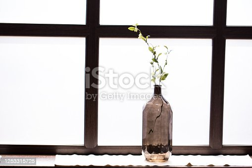 697868238 istock photo Bottle with a sprig on the windowsill with white frosted glass 1253315725