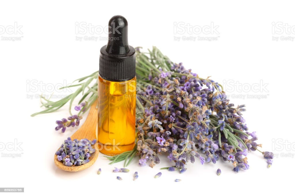 Bottle with aroma oil and lavender flowers isolated on white background stock photo