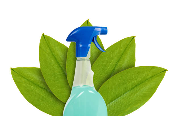 Fles met afwasmiddel op de achtergrond van groene bladeren. Geïsoleerd op wit. concept van natuurlijke oorsprong foto