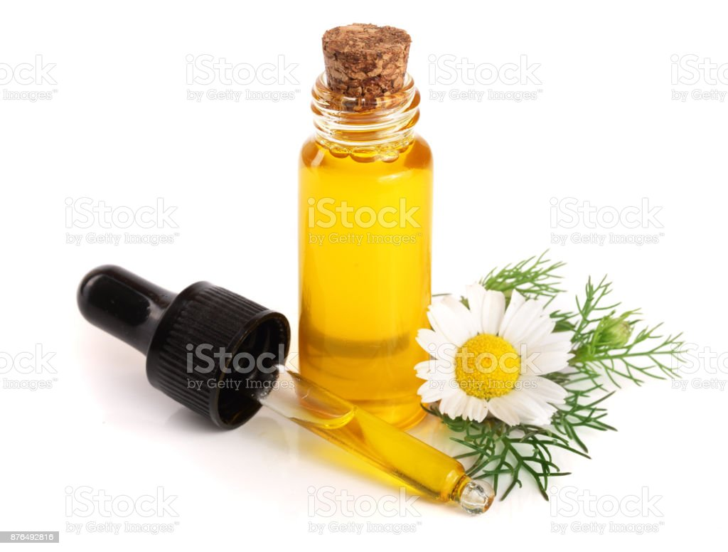 Bottle With Essential Oil And Fresh Chamomile Flowers Isolated On