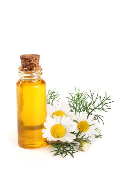 bouteille avec huiles essentielles et fleurs de camomille douce isolés sur fond blanc - Photo