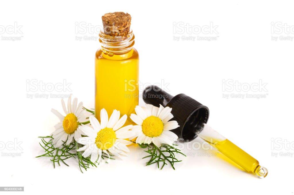 fles met etherische olie en verse kamille bloemen geïsoleerd op witte achtergrond foto