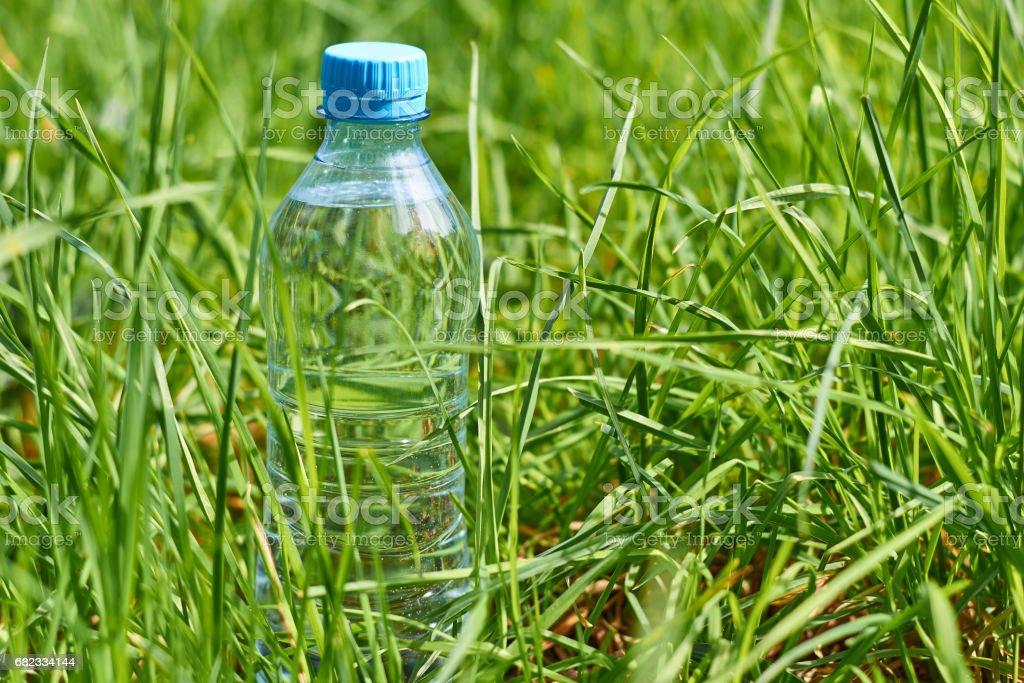 fles met zuiver bronwater permanent in het groene gras royalty free stockfoto
