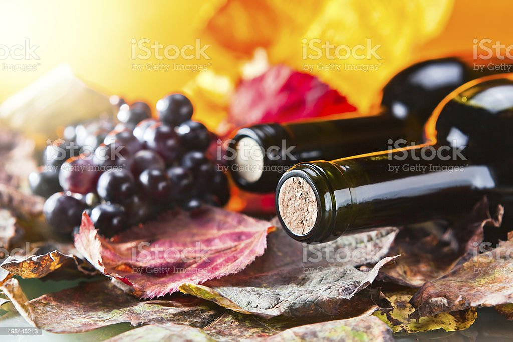 bottle with wine stock photo