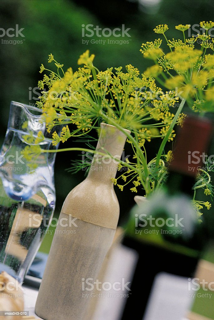 Bottles and caraffe royalty-free stock photo