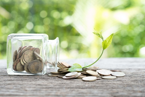 istock Bottles and coins and the plant that  up the arch. Concept of economic recovery 843889718