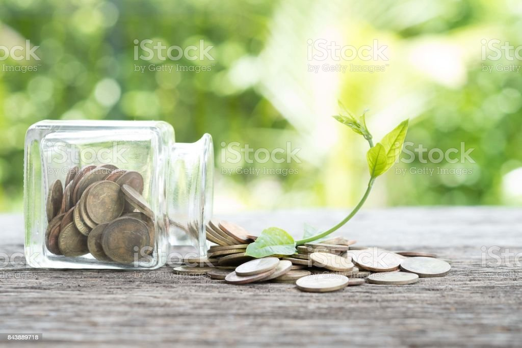 Bottles and coins and the plant that  up the arch. Concept of economic recovery stock photo