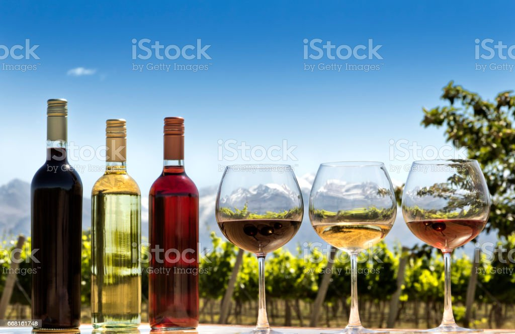 Bottles and glasses of wine stock photo