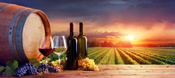 flaskor och vinglas med druvor och fat i landsbygdens scen - vineyard bildbanksfoton och bilder