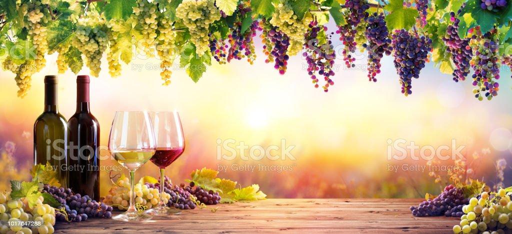 Flaschen und Gläsern mit Trauben bei Sonnenuntergang – Foto