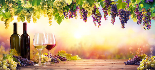 Bottles And Wineglasses With Grapes At Sunset Bottles And Wineglasses With Grapes At Sunset winetasting stock pictures, royalty-free photos & images