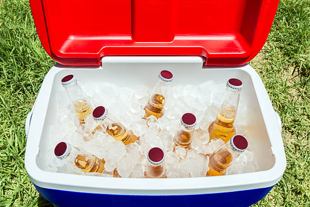 Bottles of beer in cooler box with ice Picnic cooler box with bottles of beer and ice on grass during Australia Day celebration cooler container stock pictures, royalty-free photos & images