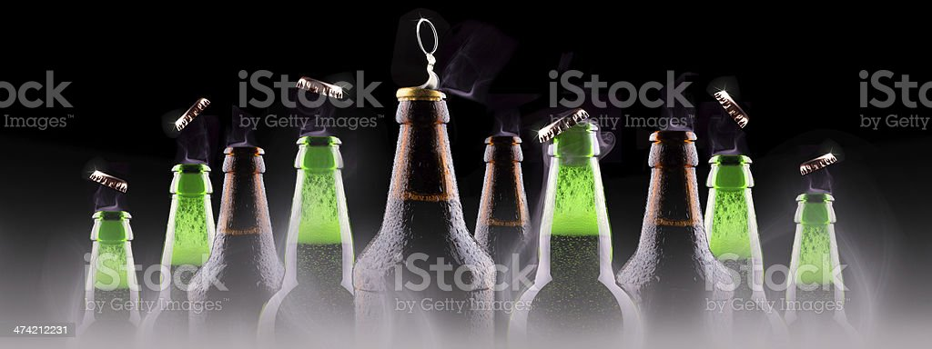 bottles of beer on ice royalty-free stock photo