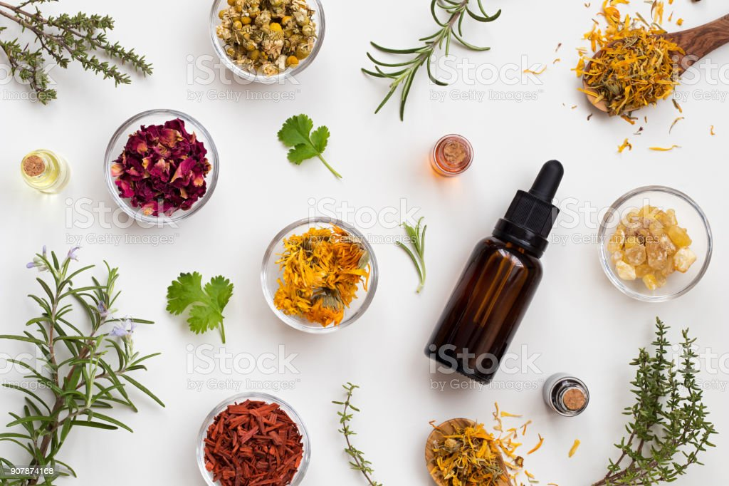 Bottles of essential oil with herbs and flowers on a white background Bottles of essential oil with fresh thyme, cilantro, blooming rosemary, frankincense resin, dried calendula, chamomile, rose petals and sandalwood on a white background Alternative Medicine Stock Photo