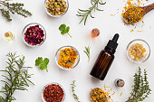 Bottles of essential oil with fresh thyme, cilantro, blooming rosemary, frankincense resin, dried calendula, chamomile, rose petals and sandalwood on a white background