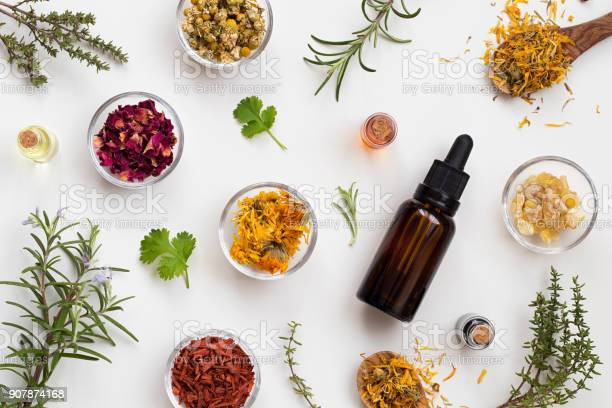 Bottles Of Essential Oil With Herbs And Flowers On A White Background Stock Photo - Download Image Now